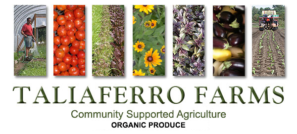 Taliaferro Farms CSA